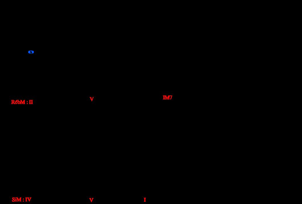 modulation (d à coda)